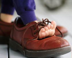 12-5-Shoe